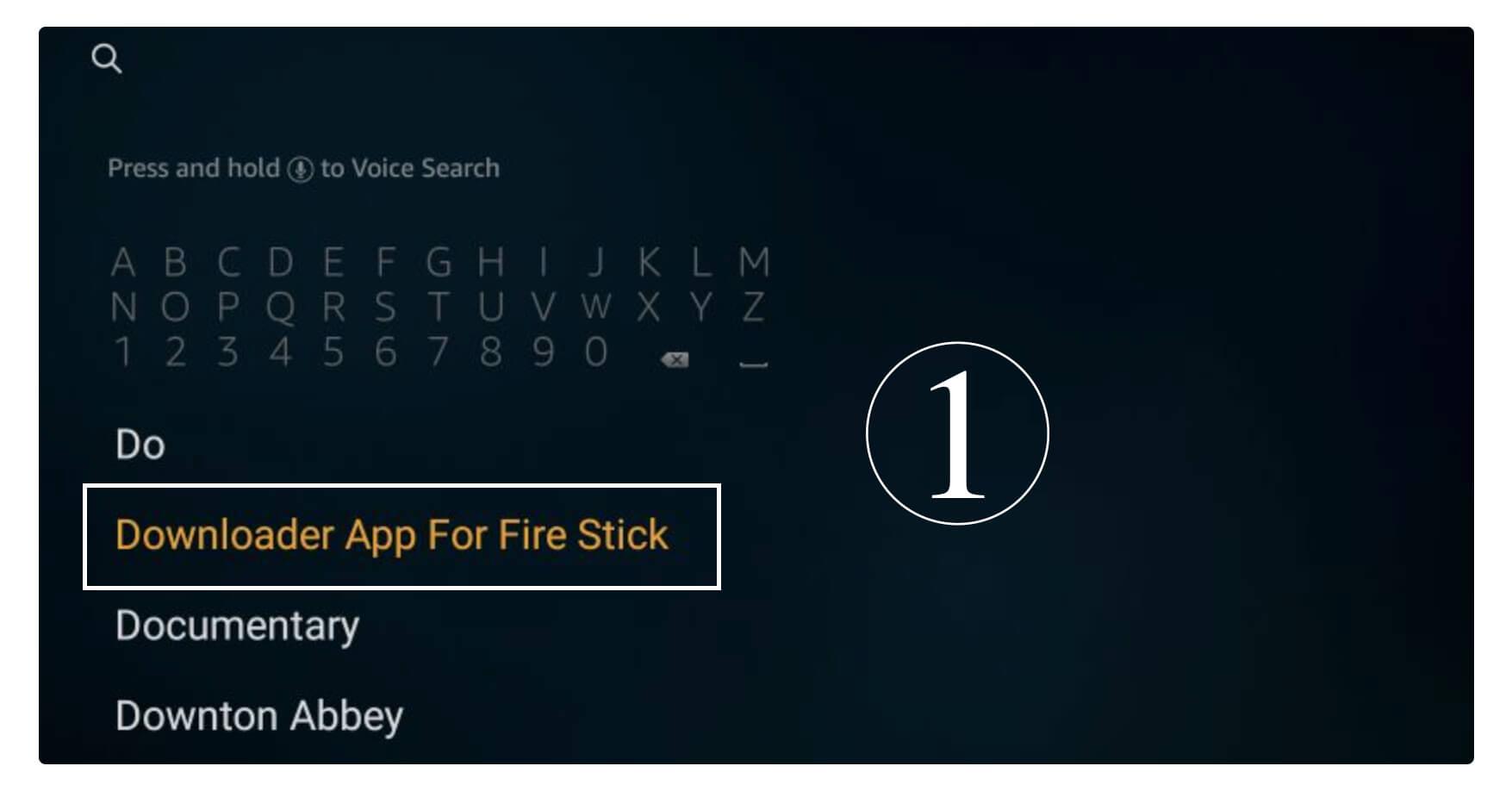 Live NetTV APK on Firestick