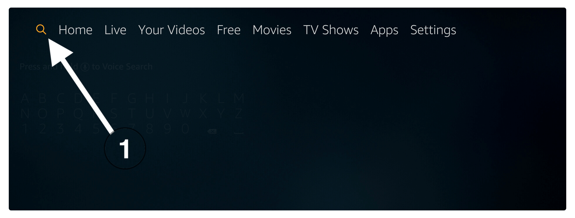 install-TVTap-on-Firestick