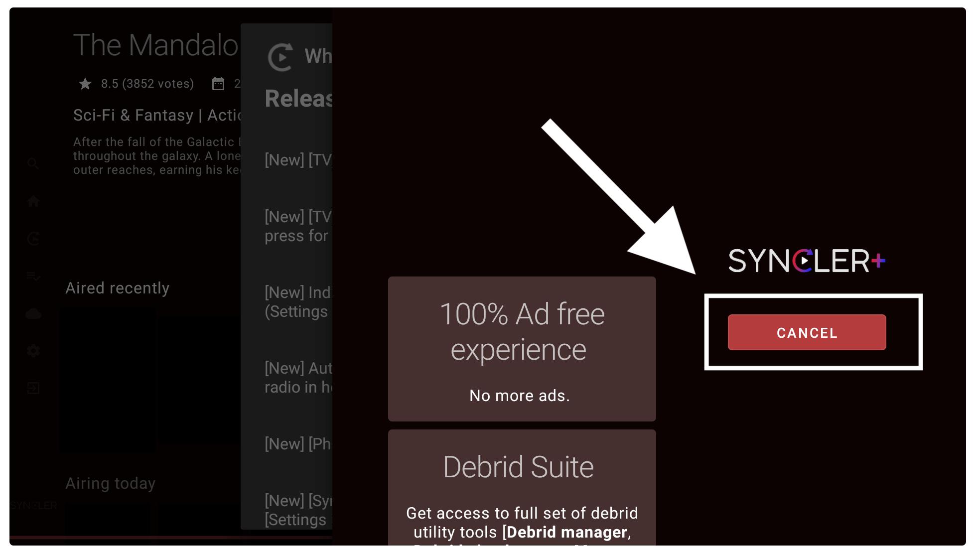 Setup-Syncler-in-Firestick